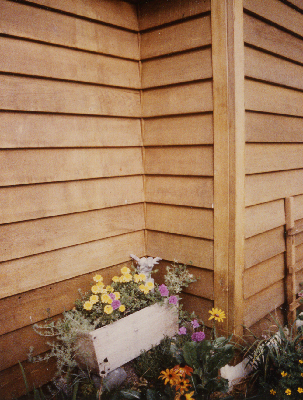 Exterior Siding Western Red Cedar Clear Stain Bevel