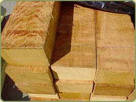 BEAR CREEK LUMBER : WESTERN RED CEDAR : POST & BEAMS : ROUGH CUT